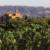 Gourmet Traveller Wine | News Article